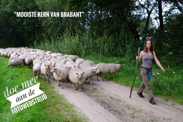 """Fotowedstrijd """"mooiste kern van Brabant"""" van start"""